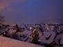 Winterliche Eindrücke aus Rapperswil-Jona - 13.02.2009